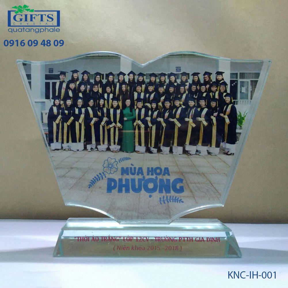 Kỷ niệm chương in hình KNC-IH-001
