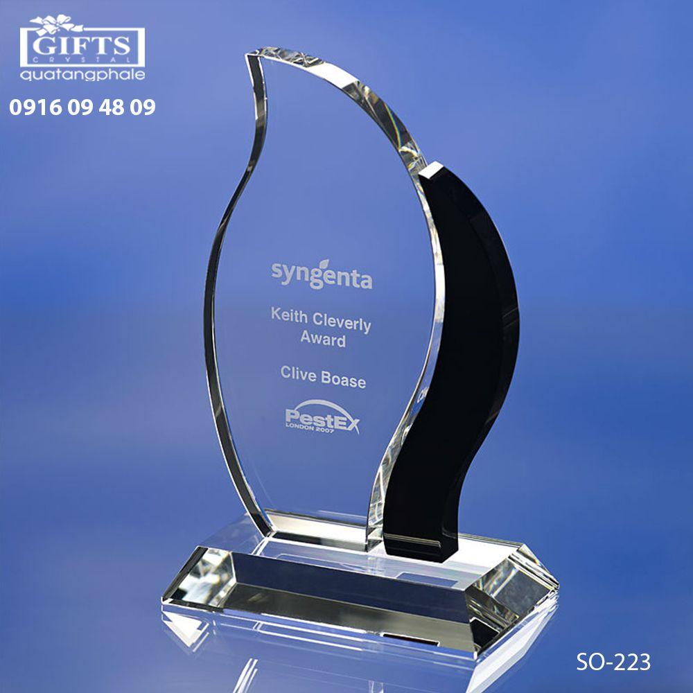 Kỷ niệm chương pha lê SO-223